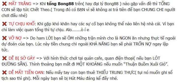 vao bong 88